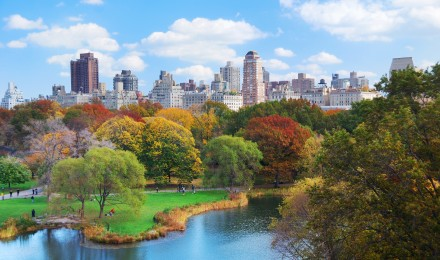 New York City Looks More Green These Days, Thank Bette Midler